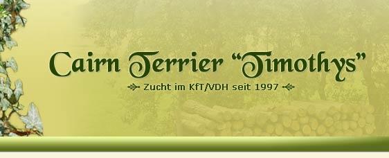 Cairnterrier Zucht, Züchter Timothys